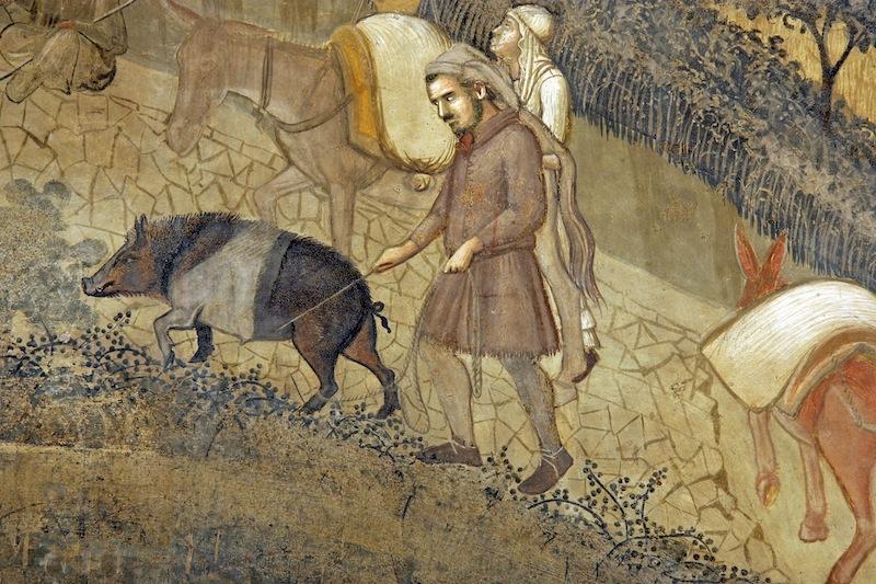 il maiale nei dipinti